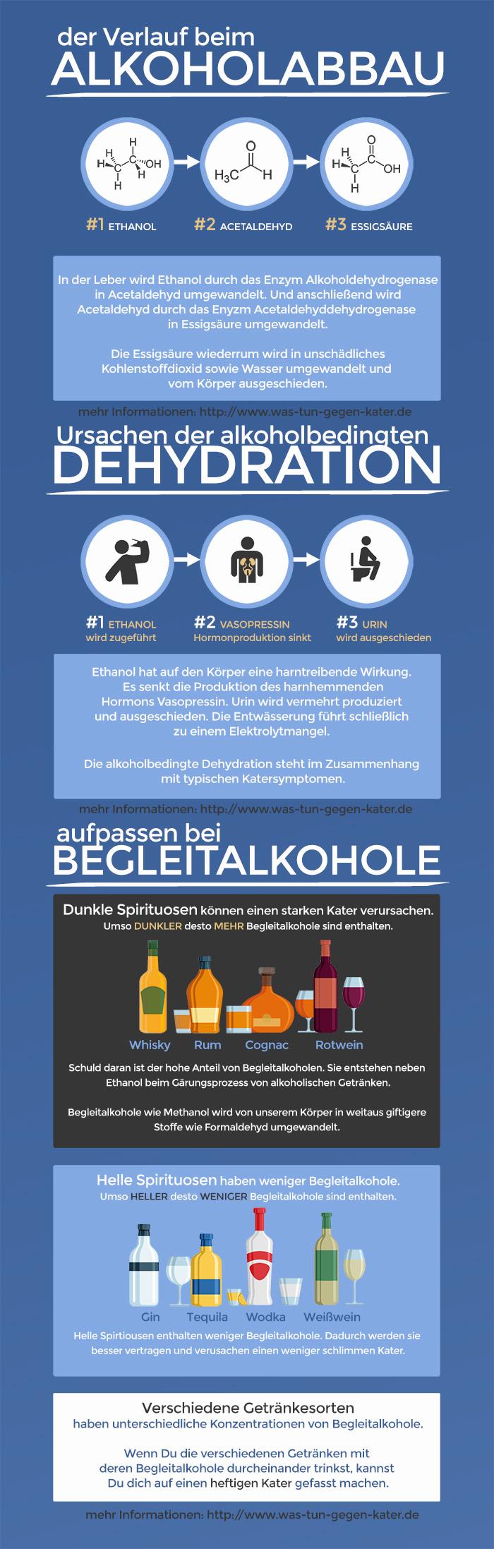infografik - Was tun gegen Kater? der Verlauf beim Alkoholabbau - Ursachen der Dehydration - aufpassen bei Begleitalkoholen
